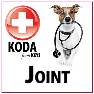 Koda_joint