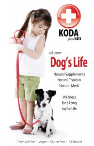KODA-Brochure_final.png