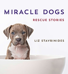 MiracleDogs_cover_EMAIL