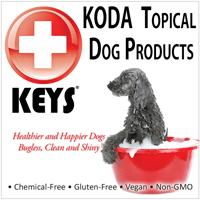 KODA-Topical-Icon